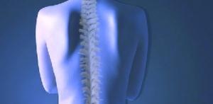 chiropractor2